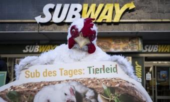 Aktionswelle zur Subway-Kampagne rollt