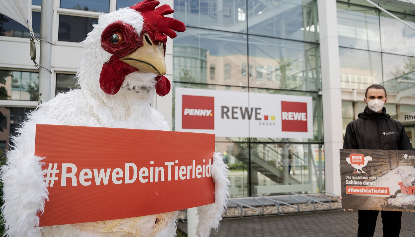 2 timo-stammberger_2105_rewe_410_pre
