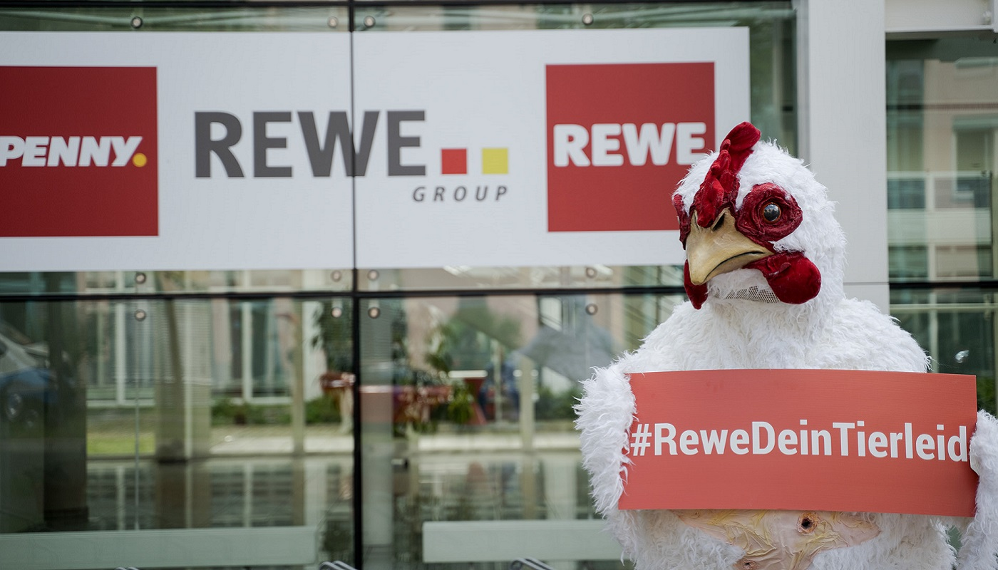 2 timo-stammberger_2105_rewe_423_pre