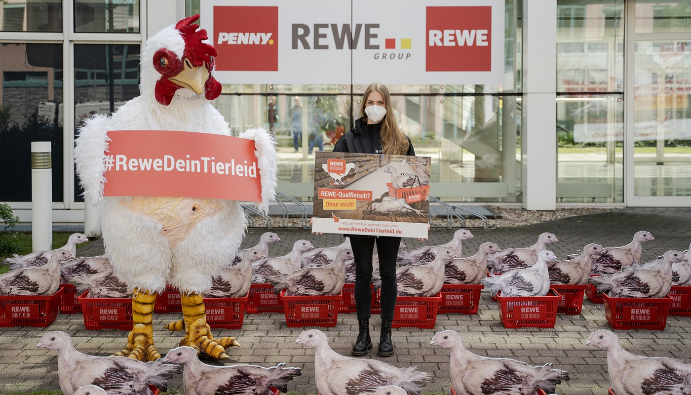 2 timo-stammberger_2105_rewe_444_pre