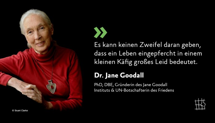 Zitat Dr. Jane Goodall