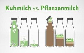 Grafik zum Vergleich Kuhmilch – Pflanzenmilch