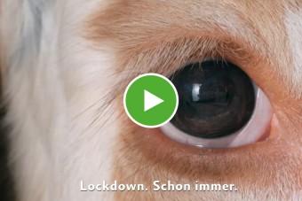 Video-Reihe: »Erzähl von mir«