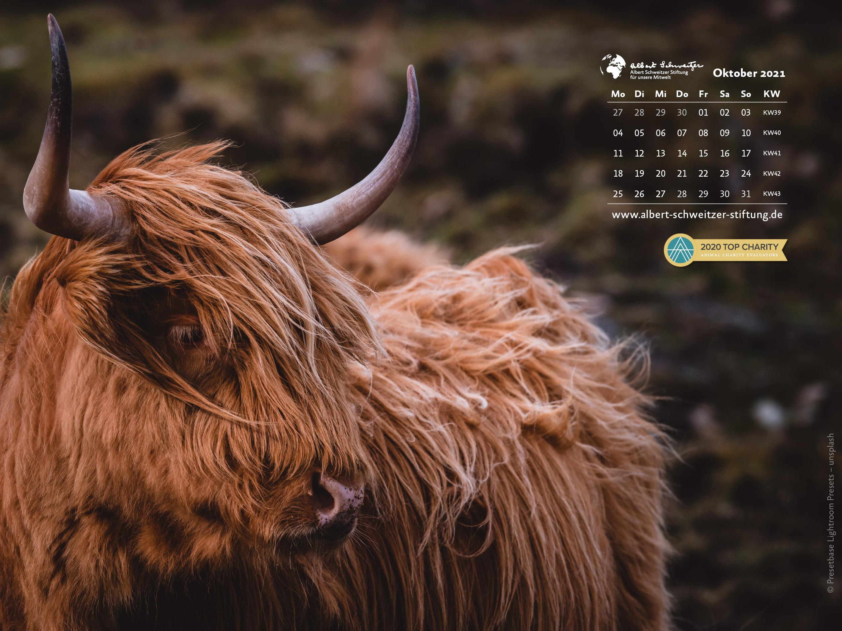 Tierkalender 4:3