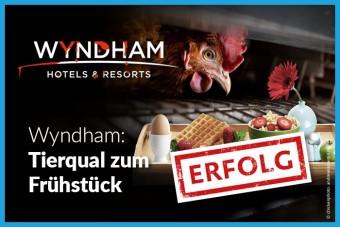 Wyndham serviert Käfigeier ab