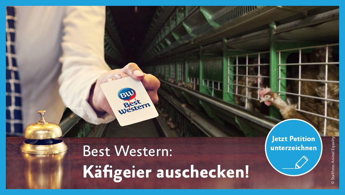 Käfigfrei-Petition Best Western Hotels