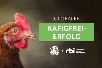 Erfolg: Burger King sagt Nein zu Käfigeiern