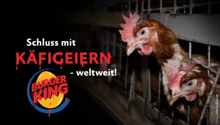 Petition Burger King