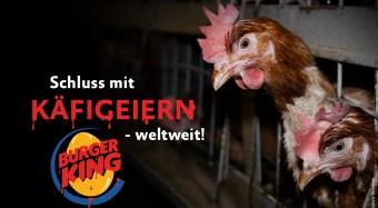 Käfigfrei: Kampagne gegen Burger King