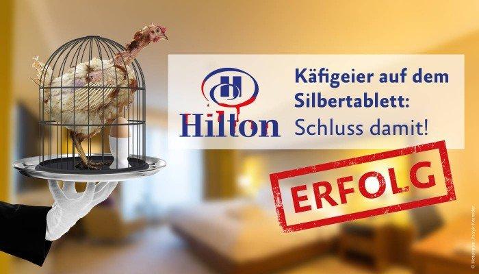 Erfolg: Hilton käfigfrei