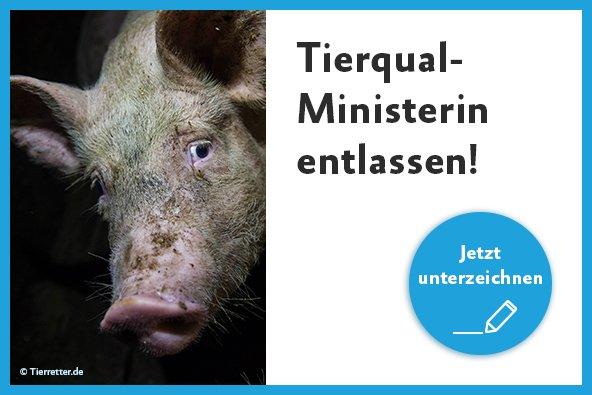 Jetzt die Petition zur Entlassung von NRW-Landwirtschaftsministerin Schulze Föcking unterzeichnen