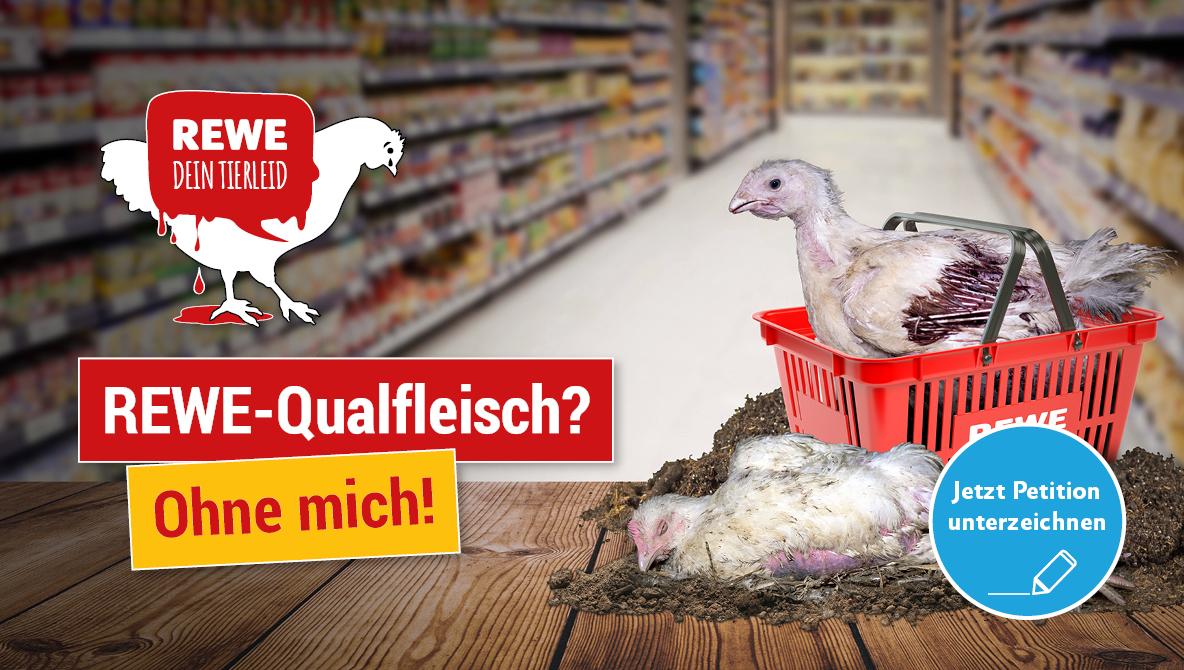 Petition: Rewe-Qualfleisch? Ohne mich!