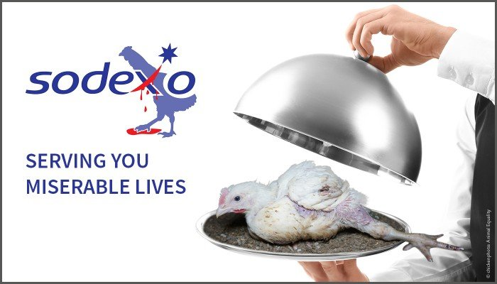 Sodexo - Serving You Miserable Lives