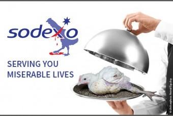 Europäische Masthuhn-Kampagne gegen Sodexo