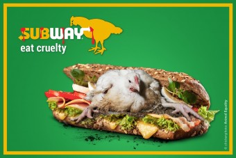 Subway drückt sich um Tierschutz