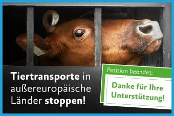 Tiertransporte in außereuropäische Länder stoppen!