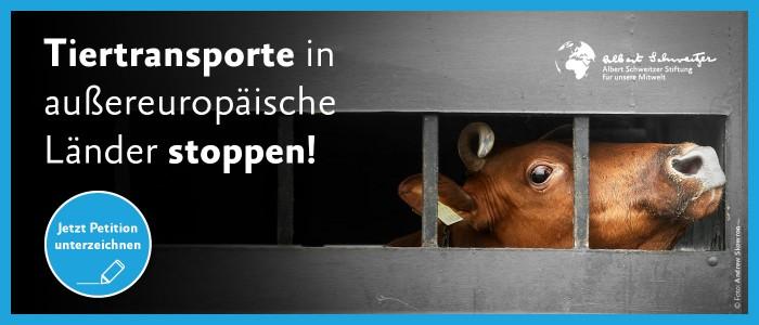 Tiertransporte ins außereuropäische Ausland stoppen
