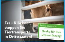 Tiertransporte: Klöckner muss handeln!