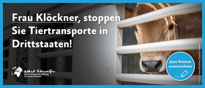 Petition: Stoppen Sie Tiertransporte in Drittländer