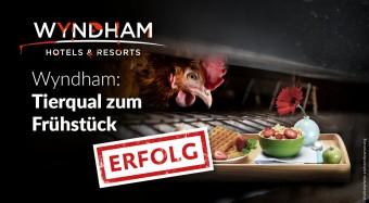 Erfolg: Wyndham serviert Käfigeier ab