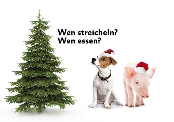 ASS_Weihnachtsbild_600-2