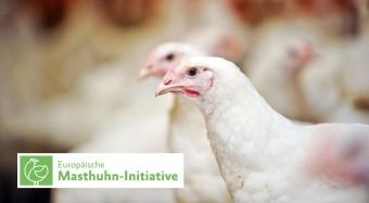 Europäische Masthuhn-Initiative