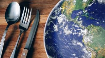 Studie zu Ernährung, Flächenbedarf und Klima
