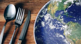 Beirat fordert neue Ernährungspolitik