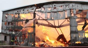 Brandgefährliche Massentierhaltung
