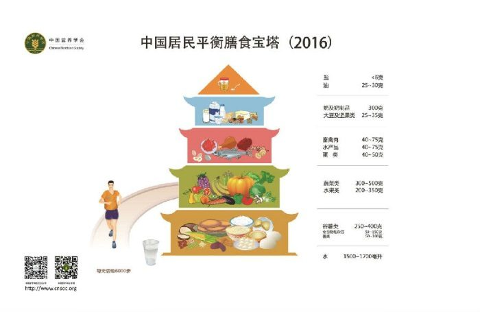 Chinese Nutrition Society Ernährungspyramide