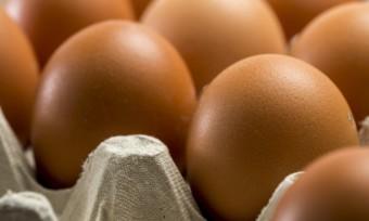 Erfolg bei Österreichs Lebensmittelriesen Spar