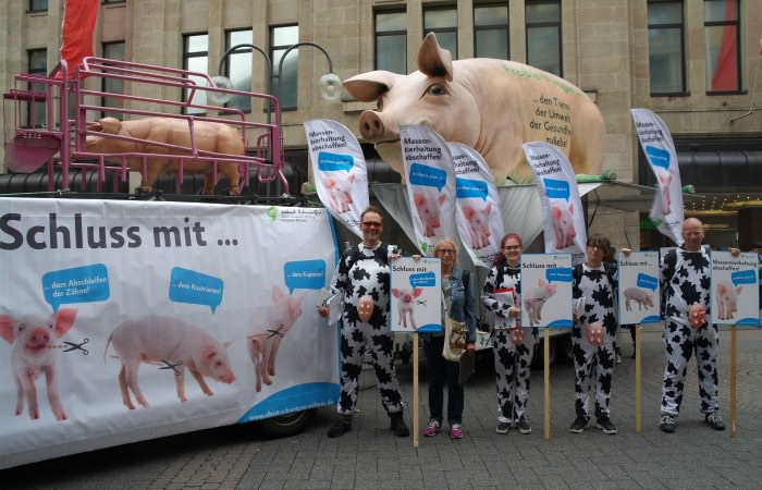GM Köln Gruppenfoto SAM_7109