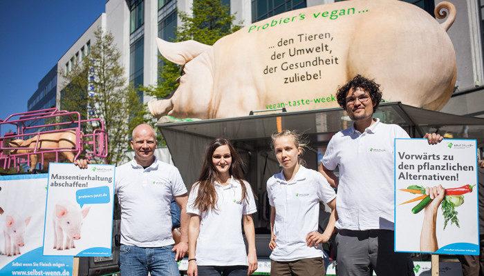Team Schwein