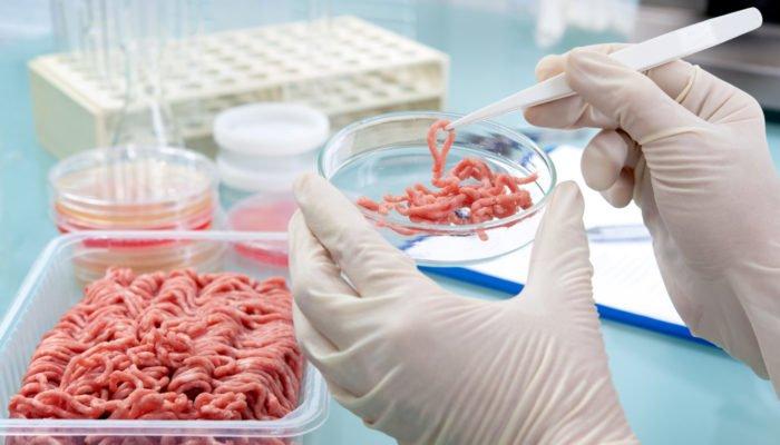 Hackfleisch Labor