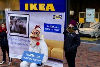 Kampagne gegen Ikea führt zum Erfolg