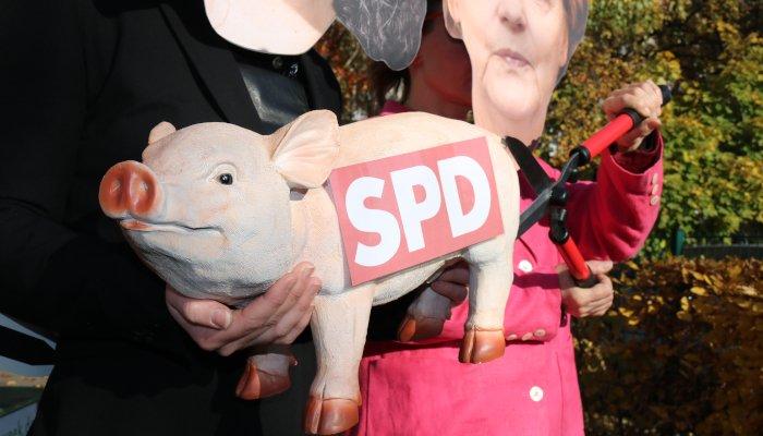 Wo bleibt der Tierschutz bei der SPD?
