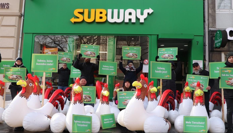 Hühner-Protest vor Subway am Chlodwigplatz in Köln.