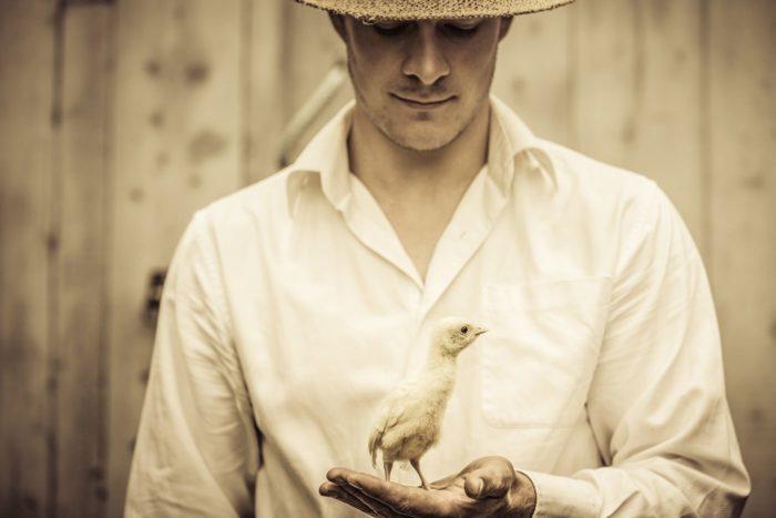 Erfolge im Tierschutz