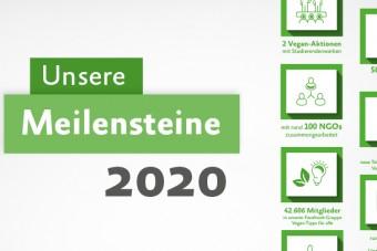 Unsere Meilensteine in 2020