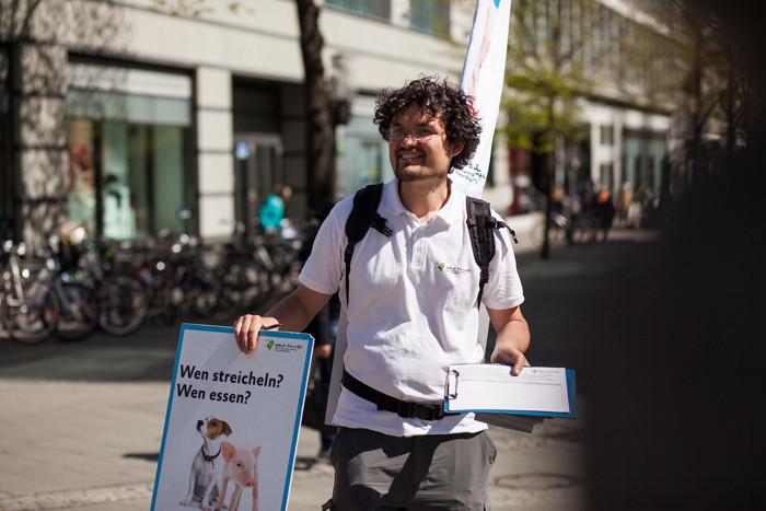 Nico Straßenkampagnen