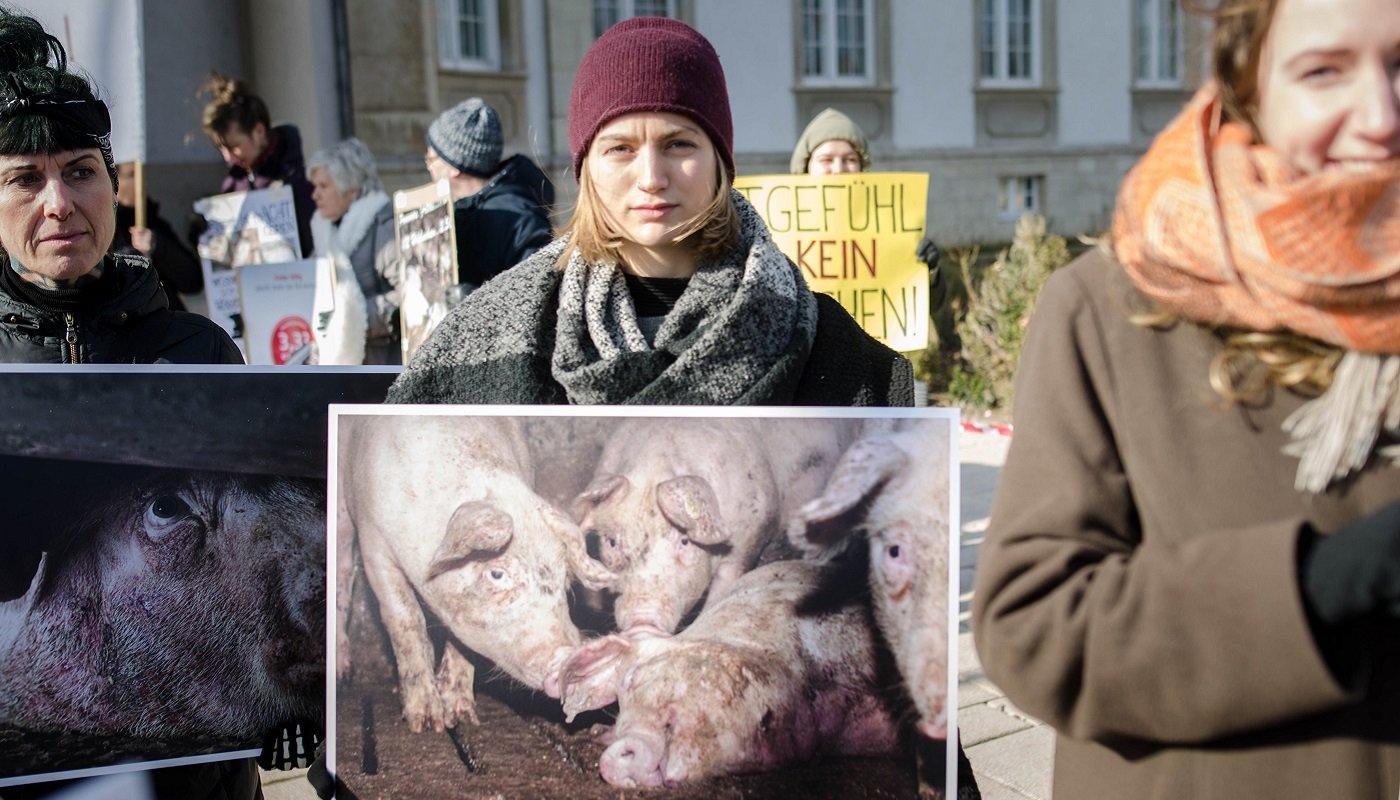 Aktivistinnen mit Fotos von gequälten Schweinen.