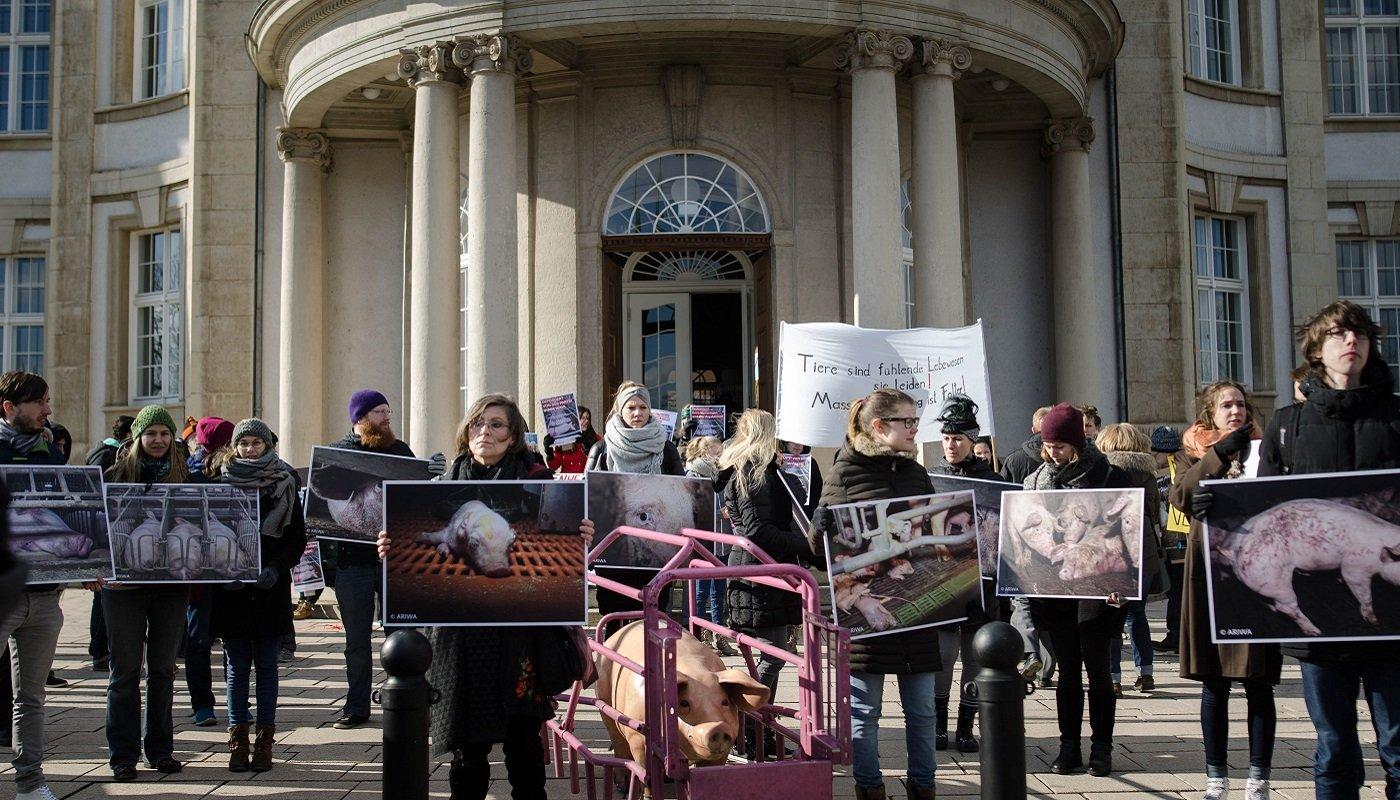 TierschutzaktivistInnen vor dem Gerichtsgebäude.