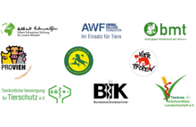 Keine Tiertransporte in Staaten außerhalb der EU