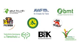 Gemeinsamer offener Brief zu Tiertransporten
