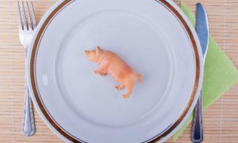 Fleischverzehr in Deutschland sinkt weiter