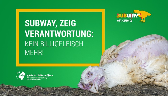 Relaunch der Subway-Kampagne