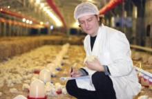 EU beschließt neues Gesetz zu Antibiotika