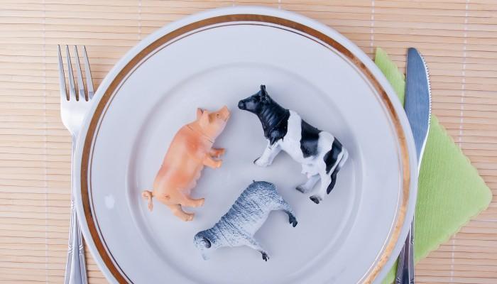 Tiere auf Teller