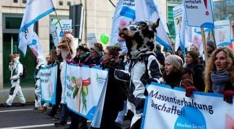 Demonstration für bio-vegane Landwirtschaft