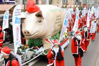 Weihnachtsaktion mit Schwein am Berliner Ku'damm